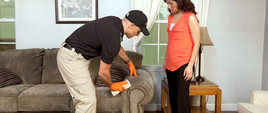 Somerset, NJ carpet upholstery cleaning